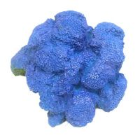 Betta Large Blue Sponge Coral Aquarium Ornament Fish Tank Aquatic Decoration